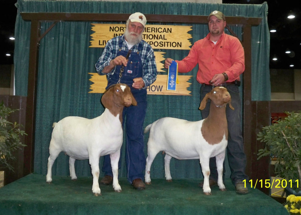 Sna Farms Champion Boer Goat Bloodlines Productive Breeding